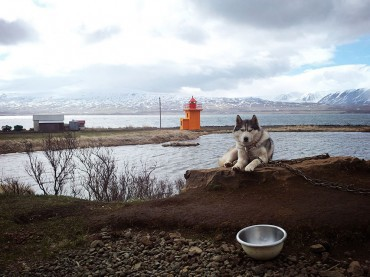 Around Iceland in 10 days. Day seven: Still in Akureyri