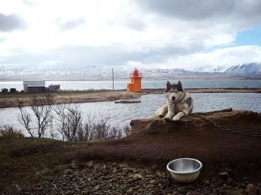 Around Iceland in 10 days. Day seven: Still in Akureyri