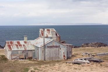Try something new: Visit the amazing Vatnsnes peninsula