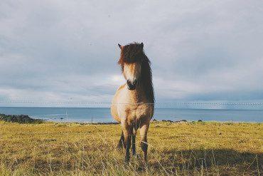 September in Iceland